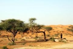 AbuDhabi40