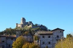 Assisi21