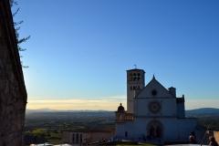 Assisi25