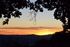 Assisi29