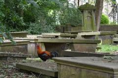 Gickerl-Friedhof