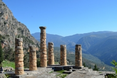 Delphi15
