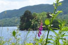Loch7