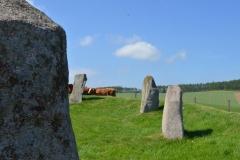 Stone-Circle4