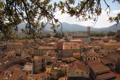 Lucca7