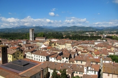 Lucca8