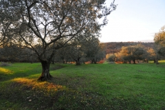 Toskana2012_2