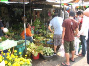 Thailand2009_15