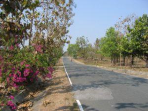 Thailand2009_29