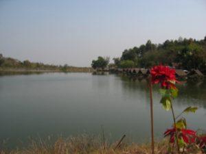 Thailand2009_30